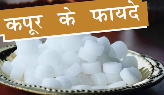 Camphor Information Uses & Benefits in Hindi Archives